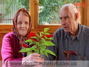 <p>пансионат для пожилых людей</p>